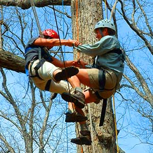 climbers1-300